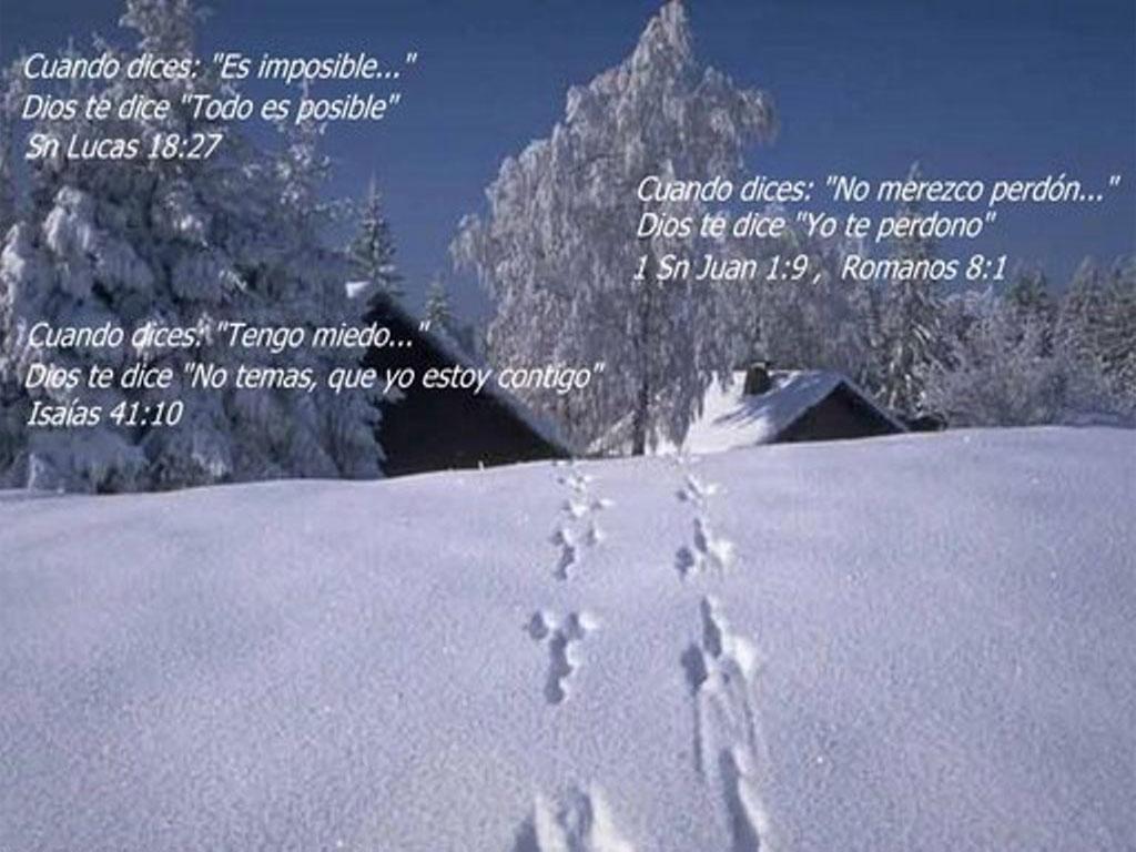 images of El Fondo Y Seleccione Quot Establecer O O Clic En La Flecha